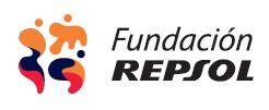 Fundaci�n Repsol
