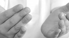 La AEF estrena una web inspirada en la transparencia y la usabilidad